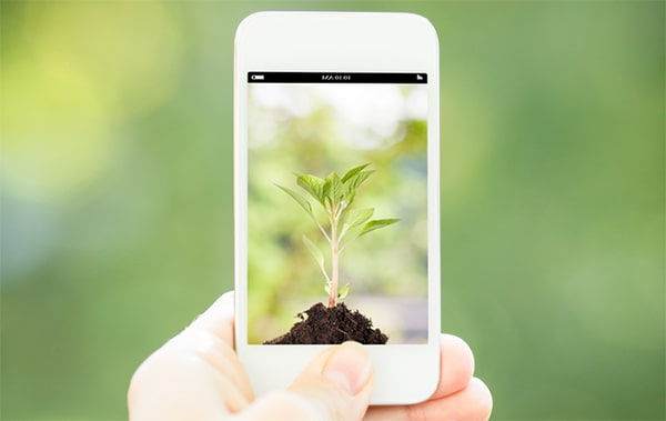 nachhaltigkeit app